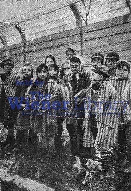 Enfants roms et sinti au camp d'Auschwitz