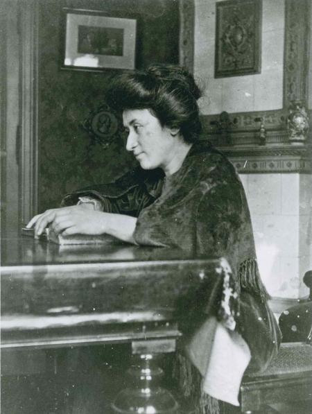 rosa 1907